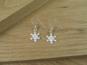 Snowflake Earrings (plpcj53)